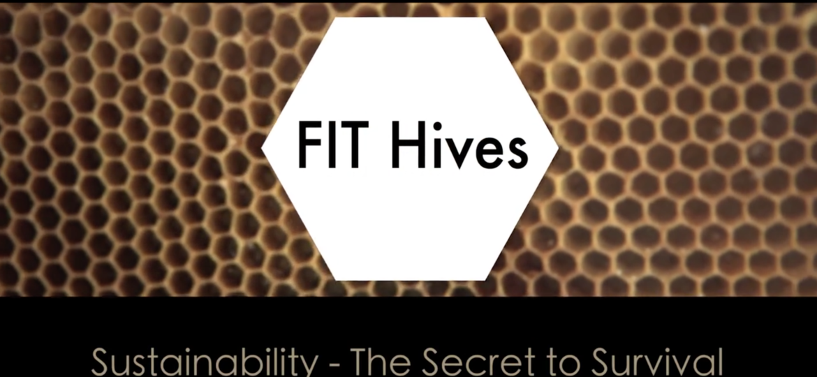 FIT Hives: Sustainability – The Secret to Survival